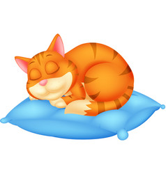 Cute cat cartoon sleeping vector