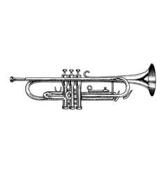 jazz instrument trumpet vector image