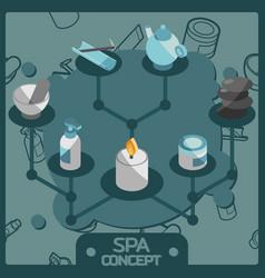 spa color isometric concept icons vector image