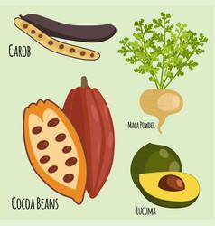 Vegetarian superfood healthy vegetable eco food vector