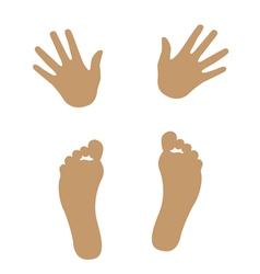 hand and foot silhouette vector image vector image