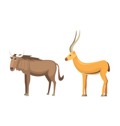 antelope cartoon set savanna animals vector image