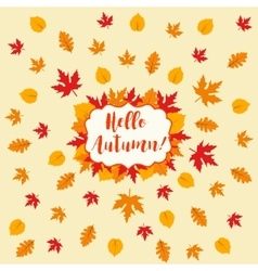 Autumn falling maple and oak leaves pattern vector image