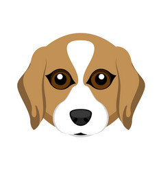 Cute beagle dog avatar vector