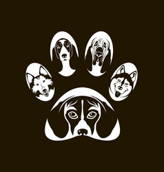 dog footprint image vector image