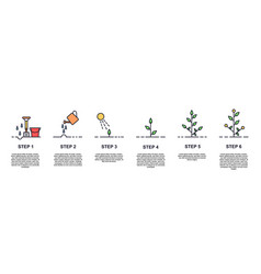 growing plant stages concept vector image