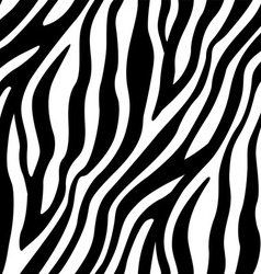 Zebra Stripes Seamless Pattern vector