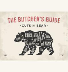 Butcher diagram scheme - bear vector