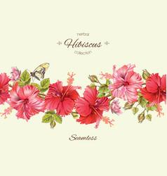 hibiscus border vector image