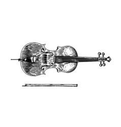 Jazz cello and bow in monochrome engraved vintage vector