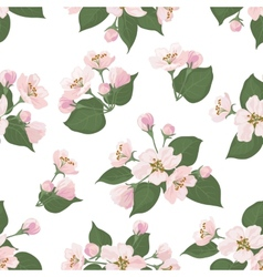 Seamless floral pattern apple tree flowers vector image vector image