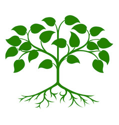 stylized tree icon vector image