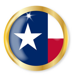 texas flag button vector image