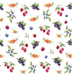 watercolor berries pattern vector image