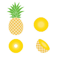 whole pineapple with round slices isolated on vector image