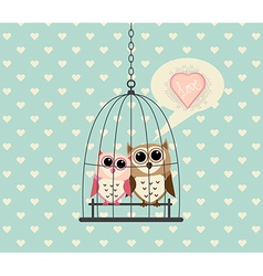 Couple Owl In Cage with Love vector image