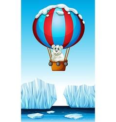 Polar bear riding in the balloon vector image vector image