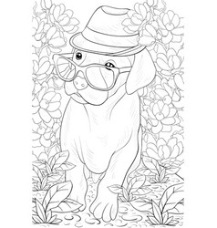 Adult coloring bookpage a cute dog wearing a hat vector