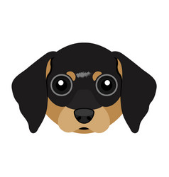 Cute dachshund dog avatar vector