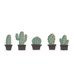 cute hand drawn cactuse in pots set vector image