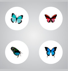 Set of moth realistic symbols with agrias claudina vector