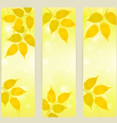 Three autumn banners with yellow leaves vector image