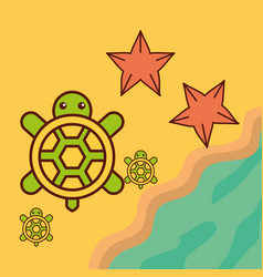 turtles starfish beach sea life cartoon vector image