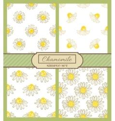 chamomile background simple set vector image