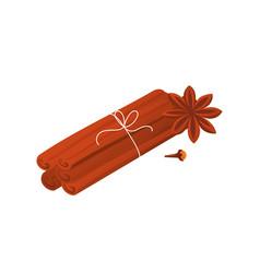 Cinnamon sticks star anise and clove vector