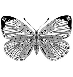 Entangle stylized black butterfly hand drawn vector
