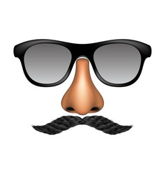 Funny mask made of glasses mustache and nose vector