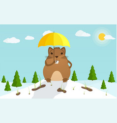 groundhog day beginning of the festive festival vector image
