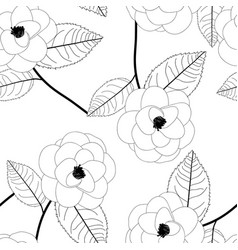 camellia flower on white background vector image