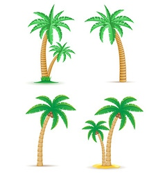 Palm 05 vector