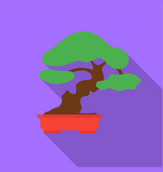 bonsai icon in flat style isolated on white vector image