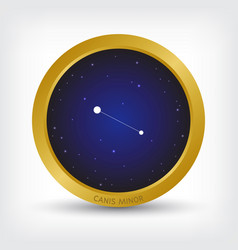Canis minor constellation in golden circle vector