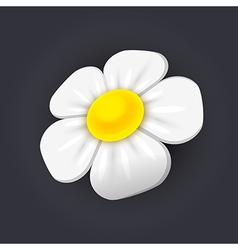 Chamomile icon vector