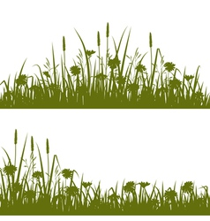 Flower field silhouette vector image vector image