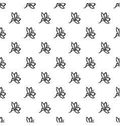 plyumeriya flower pattern seamless vector image