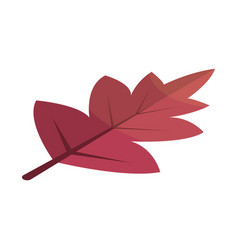 Viburnum red tree leaf icon isometric style vector
