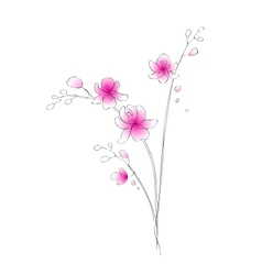 Watercolor orchid sketch vector