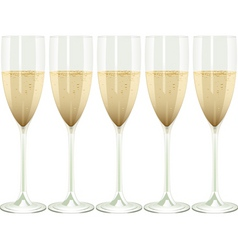 row of champagne flutes on a white background vector image vector image