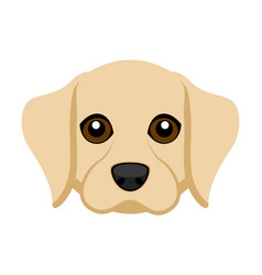 Cute labrador retriever dog avatar vector