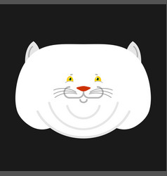 fat white cat isolated big thick pet home vector image
