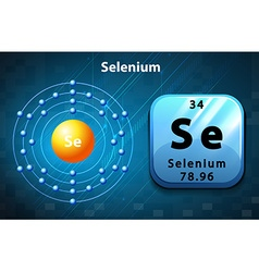 Flashcard of selenium atom vector