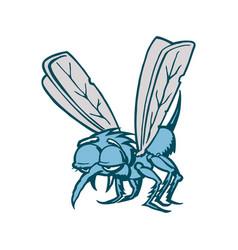 Mosquito cartoon vector