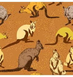 Seamless pattern with kangaroo vector image