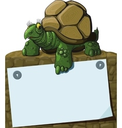 Intelligent Turtle vector image vector image