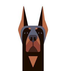 head of doberman in geometric style vector image vector image