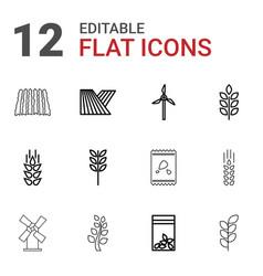 12 grain icons vector